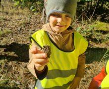 Motylki i Słoneczka – wycieczka do lasu